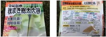 koyama1.jpg